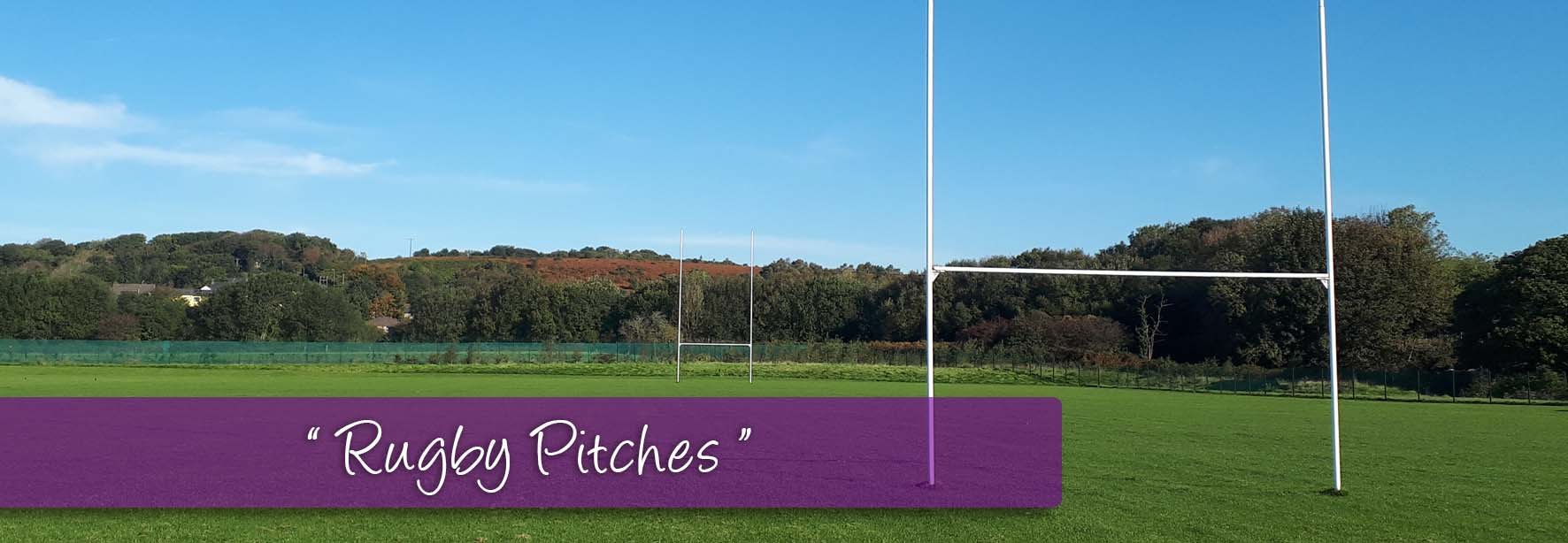 Rugby_Pitch