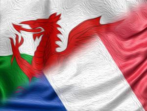 WE_FR_Flag